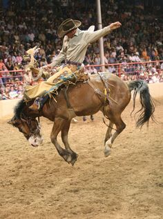 358 Best Buck Jump Riders Images In 2019 Rodeo Cowboys