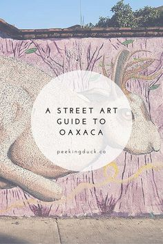 Where to find street art in Oaxaca, Mexico.
