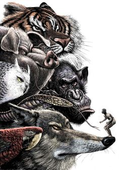 Beautiful Scratchboard Illustrations by Ricardo Martinez. --- The animals have a right to be angry. Art And Illustration, Scratchboard, Arte Pop, Amazing Art, Graphic Art, Art Drawings, Creepy Drawings, Animal Drawings, Cool Art