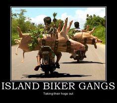 funny motivational posters   Island Biker Gangs Funny Motivational Poster