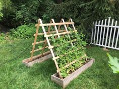 Vertical Planting, Outdoor Structures, Gardening, Plants, Home, Lawn And Garden, Ad Home, Plant, Homes