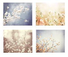 Nature Photography Set blue beige cream white by CarolynCochrane, $48.00