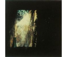 Andrei Tarkovsky #polaroid