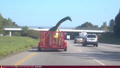 Meanwhile, On the Highway...