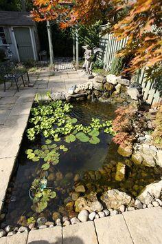 14 Fish Pond Design Ideas Create Your Own Heaven 20 - homegrowmart Pond Landscaping, Ponds Backyard, Jardin Feng Shui, Big Leaf Plants, Garden Pond Design, Carpe Koi, Pond Water Features, Small Ponds, Small Fish Pond