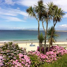 St Ives Bay Cornwall