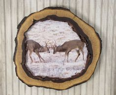 Hollow Log Picture Frame  Walnut Tree Slice by MissouriNatureArt, $75.00