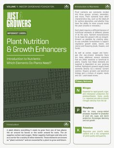 Chart To Help Identify Nutrient Deficiencies Plant