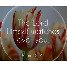Psalms 121:5 0 - this should both scare and comfort you