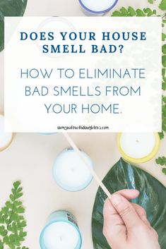 How to eliminate smells from your home. Household cleaning tips and daily cleaning tips to get rid of smells in your home.