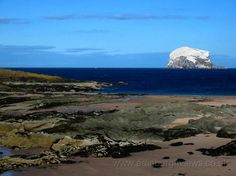 Shore and Bass Rock North Berwick Edinburgh Views Home Places In Scotland, Mother Earth, Edinburgh, The Great Outdoors, Perfect Place, Beautiful Places, Surfing, Places To Visit, Rock