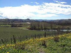 @Agriturismo Tenuta La Romana | Flickr