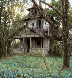 I often wonder,  when I see an old house like this, about its past,,,,,,I can almost see children playing Ring Around The Rosie on the lawn, while their parents  sit in a glider on the porch, and their grandparents rock in wooden rocking chairs and remember when they were young and playing Ring Around the Rosie,,,,,,,,,