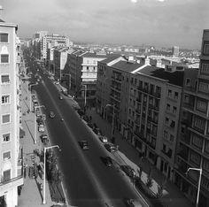 Av. de Roma, anos 50