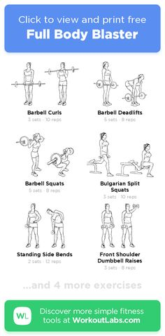 Look at this essential graphic in order to visit the shown info on Lose Belly Fat Workout Barbell Curl, Barbell Squat, Lose Your Belly Diet, Lose Belly Fat, Tank Top Arms, Forearm Stand, One Step Forward, Reps And Sets, Hammer Curls