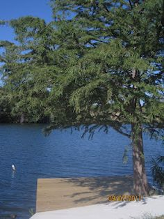 Waterfront and Land Lots available for sales at The Estates on the River - Texas Hill Country Living. I love this place.