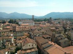 Panorámica de la ciudad desde la Torre Guinigui #EuropeosViajeros #Lucca #Italia #Italy #Europe #Viaje #Travel #Turismo #Tourism