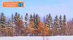 """Идеи для зимних игр с ребёнком на прогулке - Наша зима и все новогоднее (творчество, занималки, подготовка к празднику, Новый год)  - Блог """"В гостях у Весны"""" - В гостях у Весны"""
