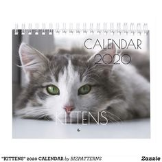 """""""KITTENS"""" 2020 CALENDAR Holiday Gifts, Holiday Cards, Beautiful Kittens, Event Template, Calendar 2020, Pet Gifts, Holidays And Events, Gifts For Family, Happy Valentines Day"""