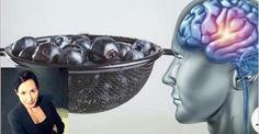 Você sabia que o cérebro humano adulto pode formar, em qualquer idade, novas células cerebrais nervosas?Isso mesmo!Para que você entenda melhor, iremos por parte.
