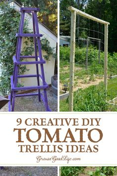 9 DIY Tomato Trellis Ideas for Healthy Tomatoes: Tomato plants will grow healthier and produce a bigger yield if they are provided support to grow on. Keeping the fruit off the soil will help prevent it from rotting or becoming food for insects and slugs. Read on for more benefits of using tomato trellis supports. #gardening #growfood #tomato #verticalgardening