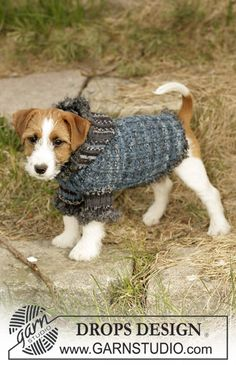 "Tweedle Dee - DROPS dog coat knitted with ""Fabel"", ""Alpaca"" and ""Puddel"". - Free pattern by DROPS Design Knitted Dog Sweater Pattern, Knit Dog Sweater, Cat Sweaters, Dog Pattern, Free Pattern, Sweater Patterns, Drops Design, Knitting Patterns For Dogs, Free Knitting"