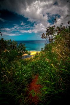 HDR - North Beach Oahu Hawaii (by JarrodLopiccolo)