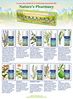 Organic Essential Oils, Tea Tree, Pharmacy, Aromatherapy, Peppermint, Conditioner, Essentials, Pure Products, Nature