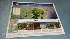 Sapelo Island National Reserve Research  Poster Vintage Large Biologist Sea Art