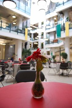 Flowers on a table at Enterprise Square, University of Alberta Downtown Campus. University Of Alberta, Peaceful Places, Historical Architecture, Alberta Canada, A Table, Table Decorations, City, Modern, Flowers