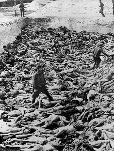 April 1945: Fritz Klein, a Nazi camp doctor who conducted medical experiments on prisoners during the Holocaust, stands among corpses in a mass grave after the liberation of Bergen-Belsen, Germany. Of the 38,500 inmates found barely alive after liberation, about 28,000 subsequently died. Watched by British soldiers, Klein is pictured here being forced to bury the dead. Bergen-Belsen was the first Nazi camp to be liberated - first visual evidence of the horrors of the Holocaust