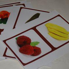 Les fruits (Grandes images classifiées) - L'esprit Montessori