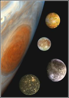 The sizes of Jupiter's four major moons in contrast to Jupiter's Great Red Spot. From top to bottom, the moons are Io, Europa, Ganymede and Callisto. Image credit: NASA/JPL/DLR