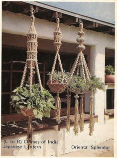 Excited to share this item from my shop: 3 Macrame Plant Hanger Patterns- Free Beginners Sampler,PDF Digital Pattern - Home Decor Macrame Hanging Planter, Macrame Plant Holder, Plant Holders, Macrame Art, Macrame Design, Macrame Projects, Macrame Plant Hanger Patterns, Free Macrame Patterns, Digital Pattern