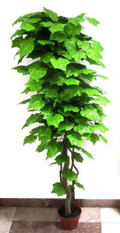 180 cm-es szőlőleveles dekorációs fa Herbs, Herb, Medicinal Plants