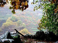 El Valle del Jerte. Barrado #Otonada2013