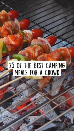 Camping Meal Planning, Best Camping Meals, Camping Menu, Camping Recipes, Camping Ideas, Dutch Oven Peach Cobbler, Dutch Oven Beef Stew, Banana Oat Pancakes, 30 Min Meals