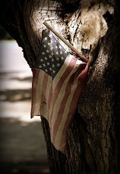 Old Glory Tattered & Torn