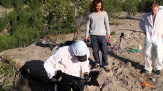 Es gibt endlos viele Videos, in denen Leute Ölfässer in die Luft fliegen lassen. Aber diese kleine norwegische Dokumentation hier schlägt dem Fass sprichwörtlich den Boden aus: 2 1/2 Minuten lang fliegen hier die Fässer rum oder ist das nur ein Fass?