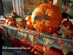 Extraordinary Days} Pumpkinizing in the Window Box with Bittersweet Fall Window Boxes, Window Box Flowers, Window Planter Boxes, Flower Boxes, Thanksgiving Decorations, Seasonal Decor, Holiday Decor, Autumn Decorating, Porch Decorating