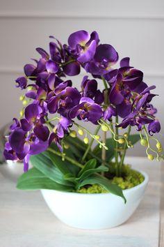 Flowers my Inspiration Potted Orchid Centerpiece, Orchid Arrangements, Orchids Garden, Phalaenopsis Orchid, Artificial Flowers, Houseplants, Flower Designs, Paper Flowers, Planting Flowers
