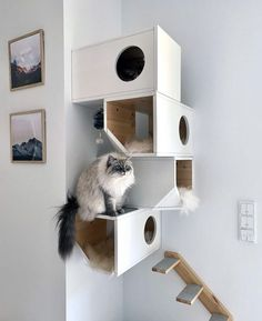 Your cat deserves a place of their own. This modern and unique cat tower provides a safe space for your cat with tons of room to explore and play. Cool Cat Beds, Diy Cat Shelves, Hiding Cat Litter Box, Cat House Diy, Kitty House, Cat Perch, Cat Towers, Cat Scratcher, Cat Room