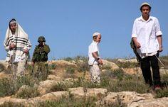 مستوطن يستولي على ارض مملوكة لفلسطيني في الاغوار