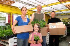 Jungpflanzenversand Jungpflanzen Versand Aradura biologisch bio gentechnikfrei Vielfalt Chilis Tomaten Paprika Postweg Post Bestellen Online Shop Lieferung Nachhaltig