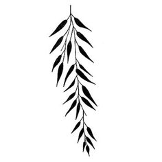 line drawing tattoo willow leaf - Google Search