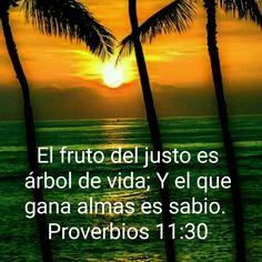 Proverbs, Psalms, Bible Verses, San Juan, Dios