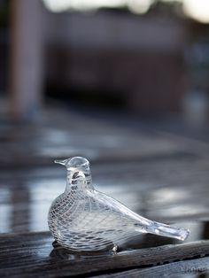 Birds by Toikka Mediator Dove iittala Finland, Arts And Crafts, Birds, Glass, Animals, Design, Animales, Drinkware, Animaux