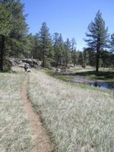 The Best Short Day Hikes in Flagstaff, Arizona: Easy to moderate hikes, 5 miles or less