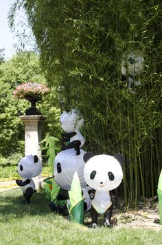 Playful (not to mention cute!) pandas lurk in the bamboo. Photo by Cat Hendel.