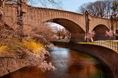 $37 Mike Savad - Newark, NJ - Branch Brook Park - This location is known for its cherry blossoms. A rather long park, it only really looks nice in the Spring. Being a rather urban area, Newark, NJ, it's nice to see some color here and there. #savad #bridge #newjersey
